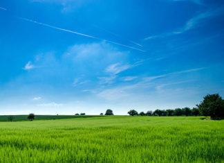 Agroturystyka w Wielkopolsce