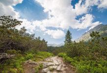 Kilka faktów o wypoczynku w górach